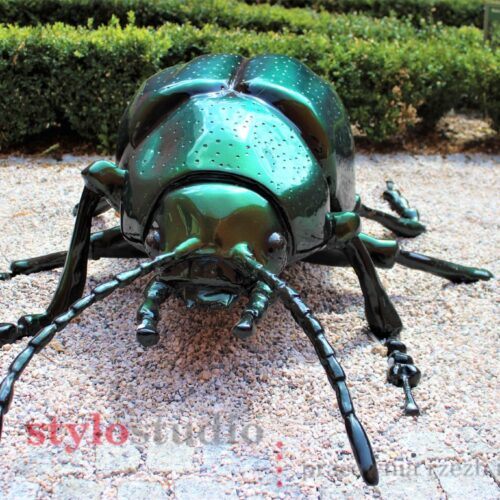 Muzeum Przyrodnicze w Jeleniej Górze -modele owadów